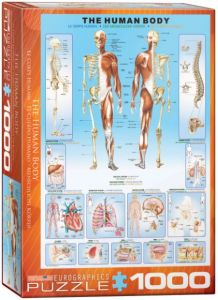 The Human Body, puzzle 1000 palaa