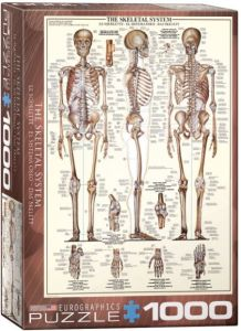 The Skeletal System, puzzle 1000 palaa