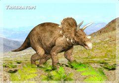 3D-kortti Triceratops