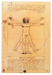 Muistikirja da Vinci - Vitruvian Man
