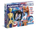 Clementoni Anatomy Lab - ihminen